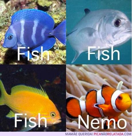 Peixes...